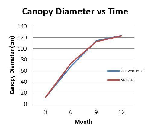 Canopy Diameter vs Time