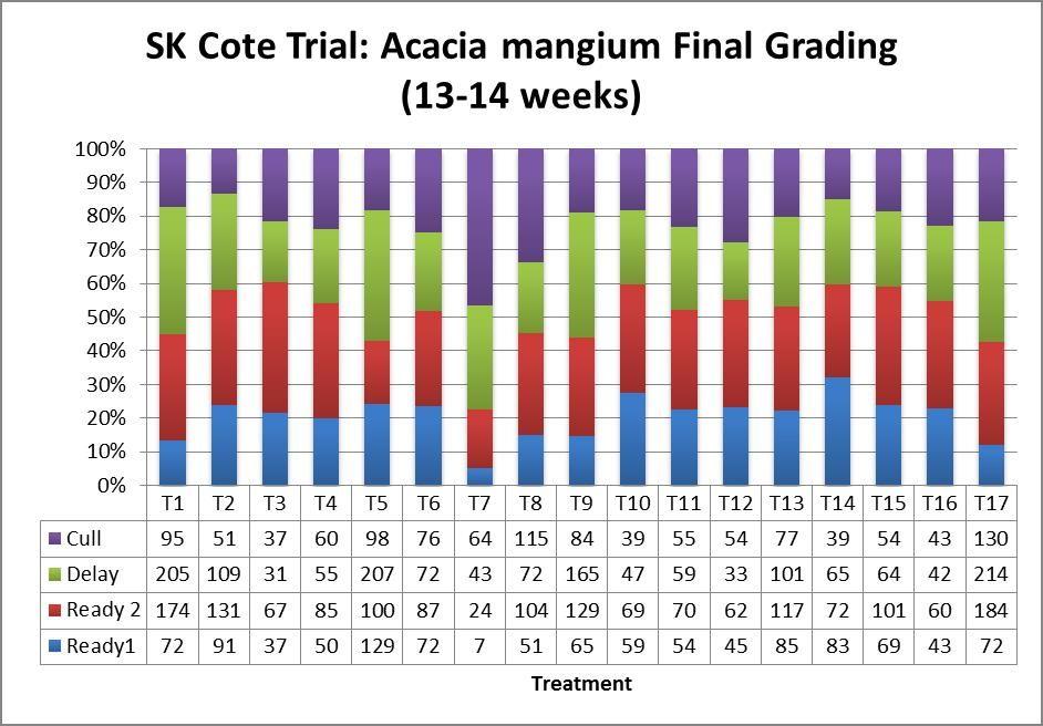 SK Cote Trial Acacia Mangium Final Grading