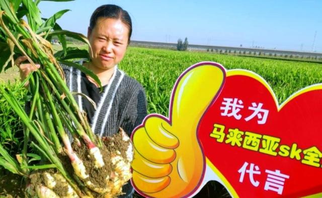 SK Specialties- Customer Testimonial- Ginger Farmer.